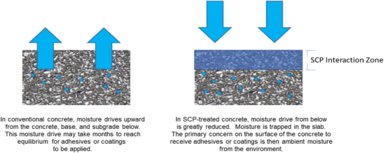 How SCP Products Work